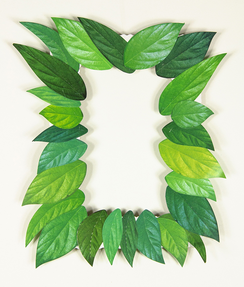 Collage Leaves Frame   Roylco
