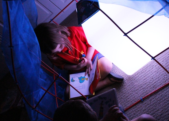 light box cube reading fort