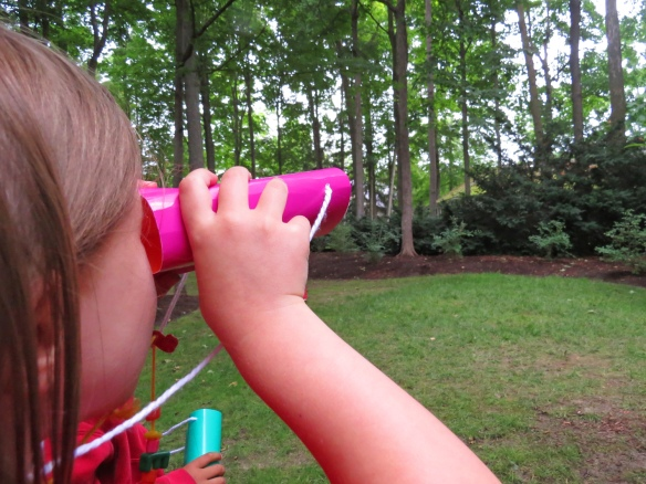 tube seed feeder crafts binoculars