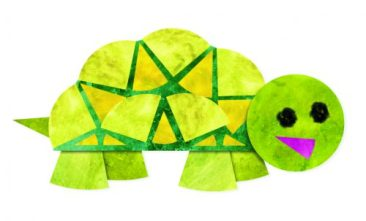 Fracton Friends_Turtle
